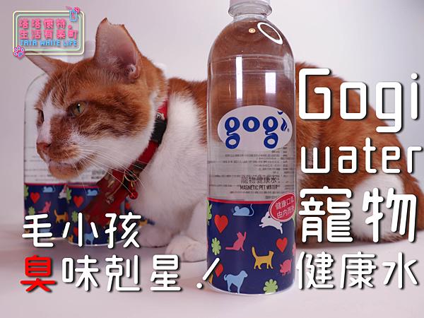 【塔塔懷特掀好物】Gogi water寵物健康水:臭味剋星!貓貓狗狗都適合,寵物專用飲水推薦,吃好睡好更要喝得好!給親愛的毛小孩最細心的呵護!