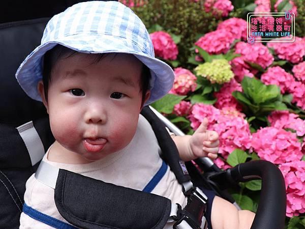 【塔塔懷特育兒生活】林萌之的時尚穿搭分享: Chichi X kids韓國童裝推薦!流行不撞衫,好看又穿得舒服的寶寶衣服這裡買-8063.jpg