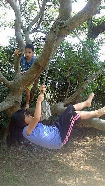 0905後山爬樹