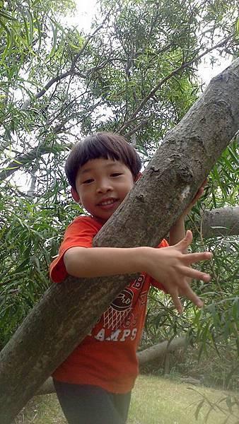 0905後山帆爬樹