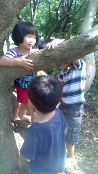 小幼組想方法爬樹