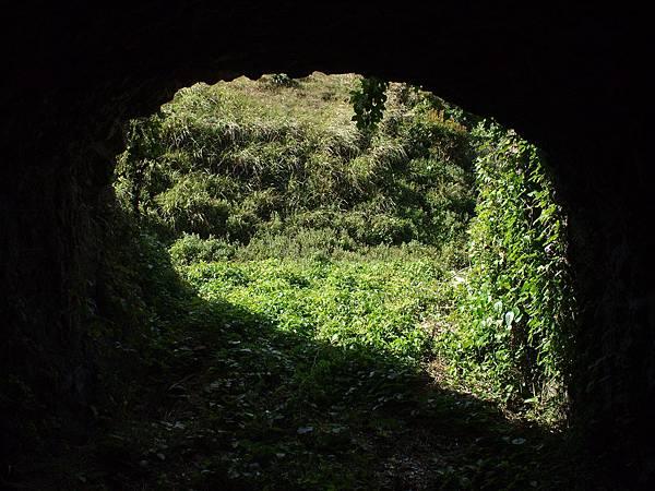 003一江山島上原本很多這種坑道,現都已荒蕪.jpg