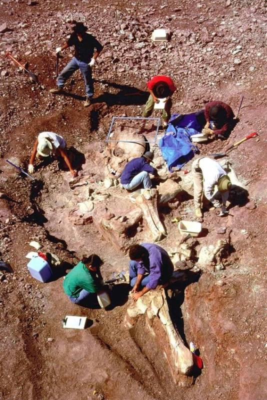 巨人骨骸4.jpg