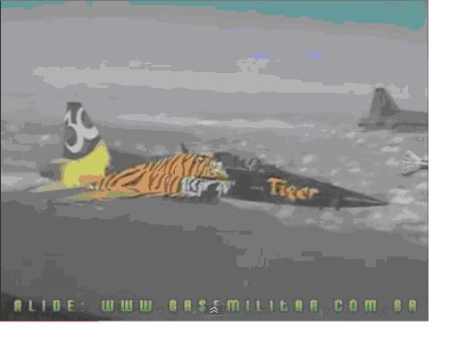 F5E戰鬥機.bmp