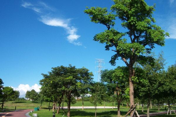 埔頂公園071001_ 010.jpg