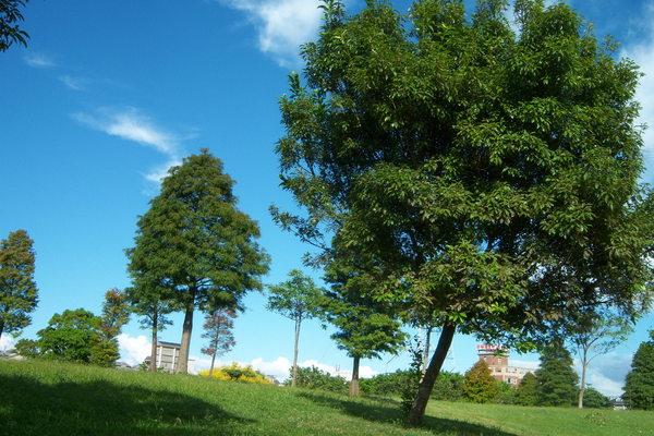 埔頂公園071001_ 018.jpg