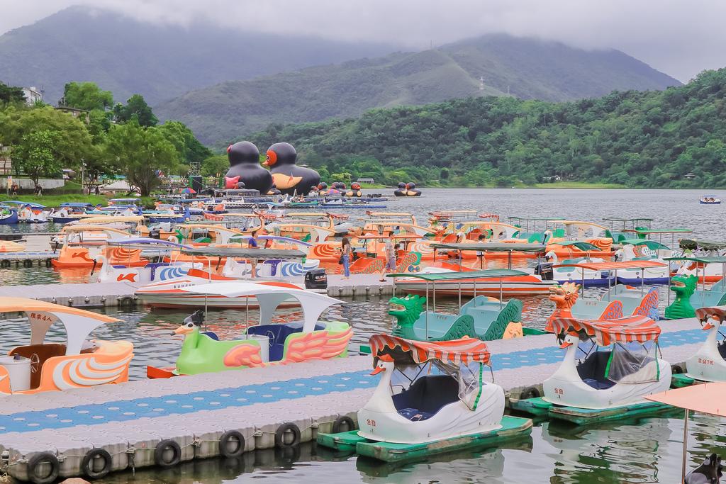 2020紅面鴨FUN暑假