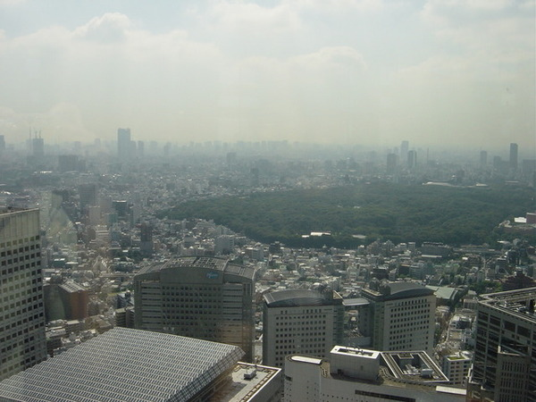 東京都廳景觀台