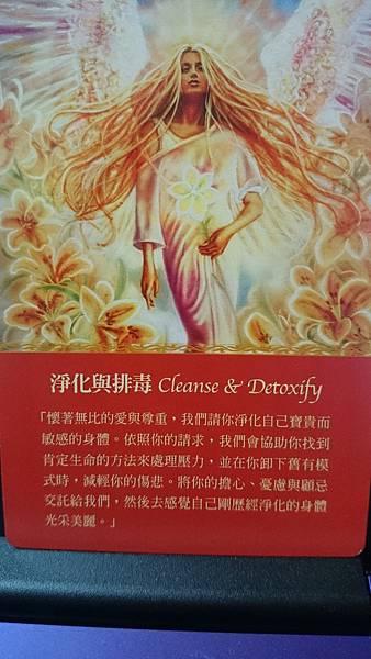 淨化與排毒 Cleanse & Detoxify