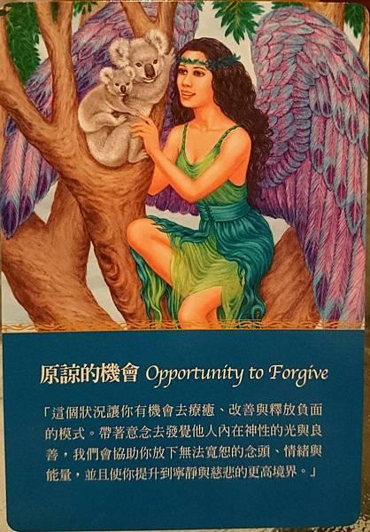 原諒的機會 Opportunity Forgive