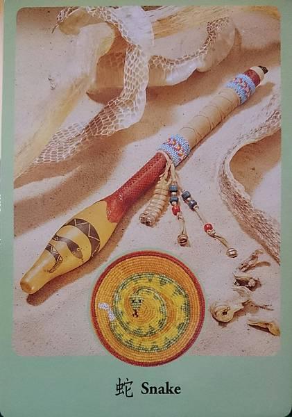蛇-snake