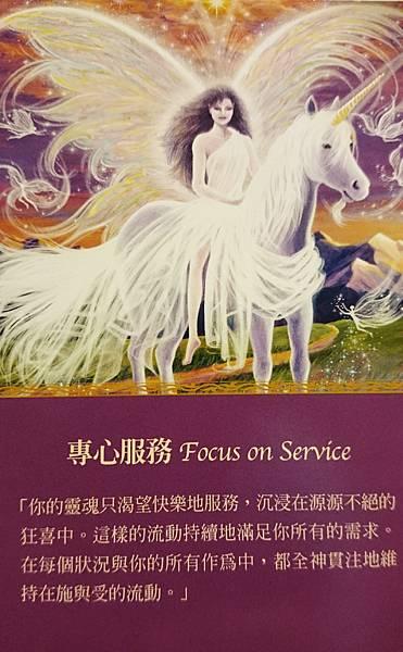 專心服務 Focus on Service