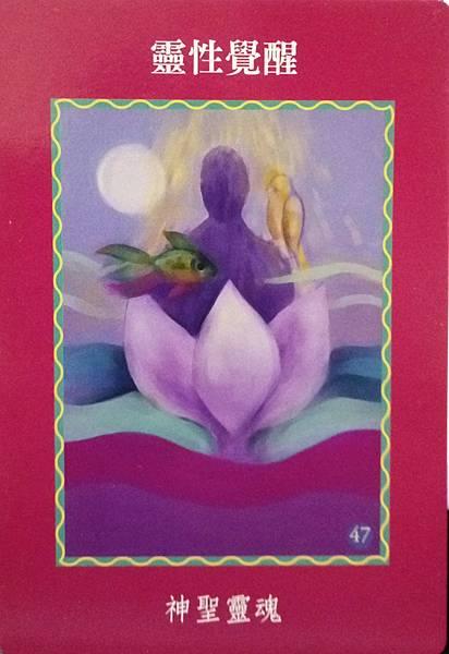 靈性覺醒-神聖靈魂