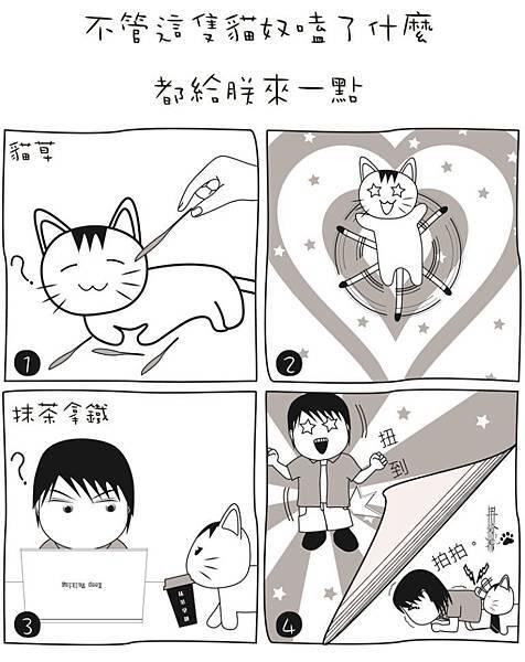 金皇愛貓草三分愛抹茶(s)