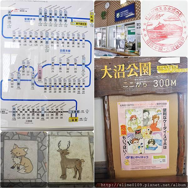 大沼公園駅05
