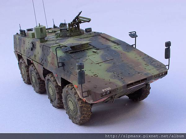 German Boxer MRAV (4)