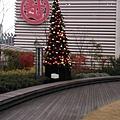 Day 2 - 新光三越 銀座店 9F 空中花園 : 聖誕樹