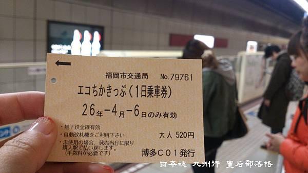 DSC_4977.JPG