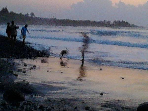 ㄖ出之錢的海灘2.jpg