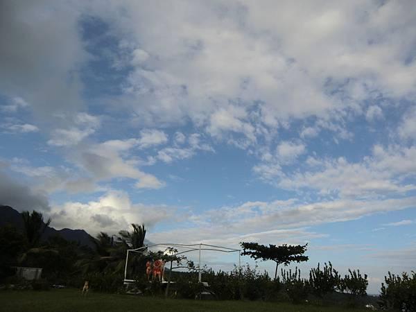 雲和樹.JPG