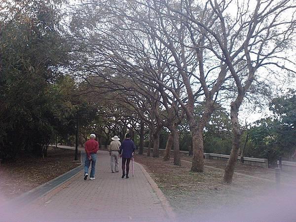 都會公園2.jpg