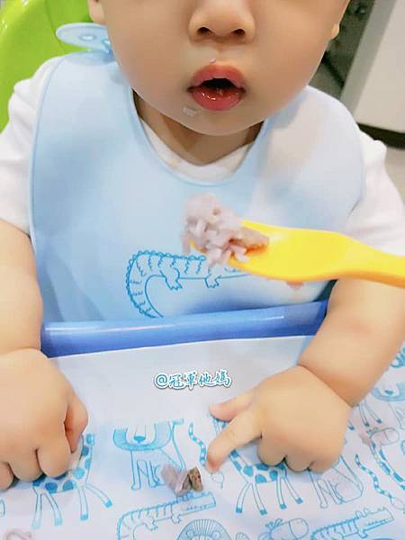 BAILEY貝睿哺育用品 BAILEY矽膠圍兜餐墊 寶寶圍兜 寶寶餐墊 彌月 收涎 周歲 週歲 送禮31.jpg