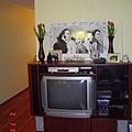 客廳ㄉ電視櫃