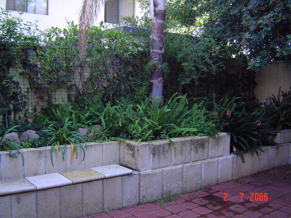 後花園一角