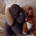 小象 +  袋鼠