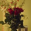 gennaro送的花  超感動說