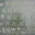 20080902-3-09 真斑駁