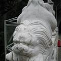 20080911-玩樂-08 獅子的動作表情也都不一樣