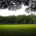 20100404-2-09 青年公園