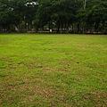 20100404-2-19 大草地