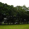 20100404-2-20