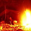 營火伴我眠