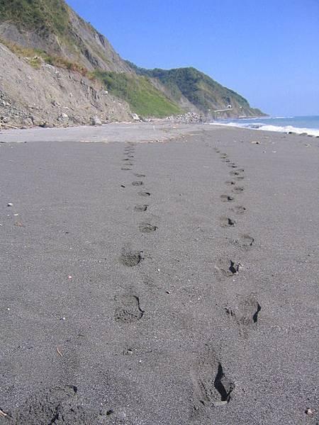 步行東海岸