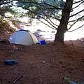 [東進新康十景] 松針營地