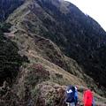 上海諾南山是一道綠色天梯