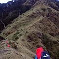 陡上綠色天梯