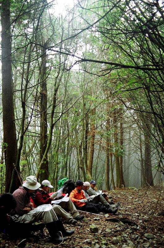 接上平坦空曠的廢棄林道