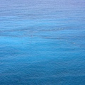 一旁藍色海洋中的定置魚網