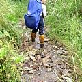 大同15分鐘後的 溪溝水源