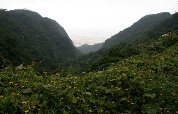 猴洞坑溪小峽谷
