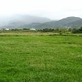 先經過一片綠野