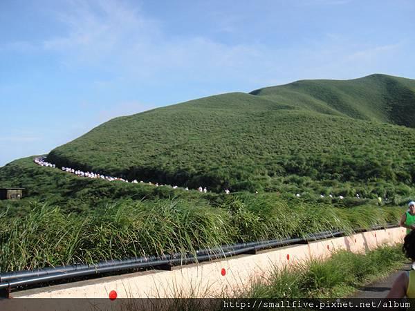 竹子山軍事道路!   植被超有3000公尺高山的FU!!