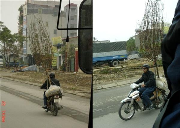 再來見識一下 越南奇景!