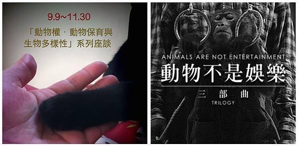動物權.jpg