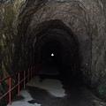 白楊步道入口隧道