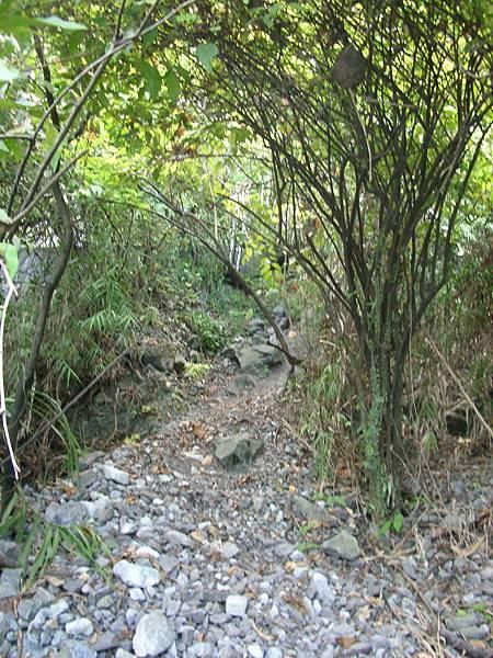 崇德隧道-石硿仔步道入口